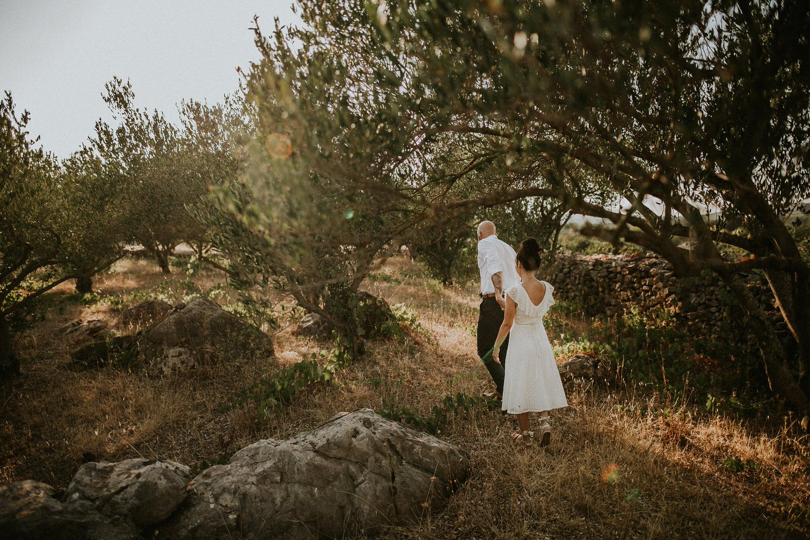 couple in olive trees on island Hvar